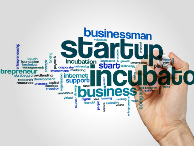 The Importance of Incubators and Accelerators