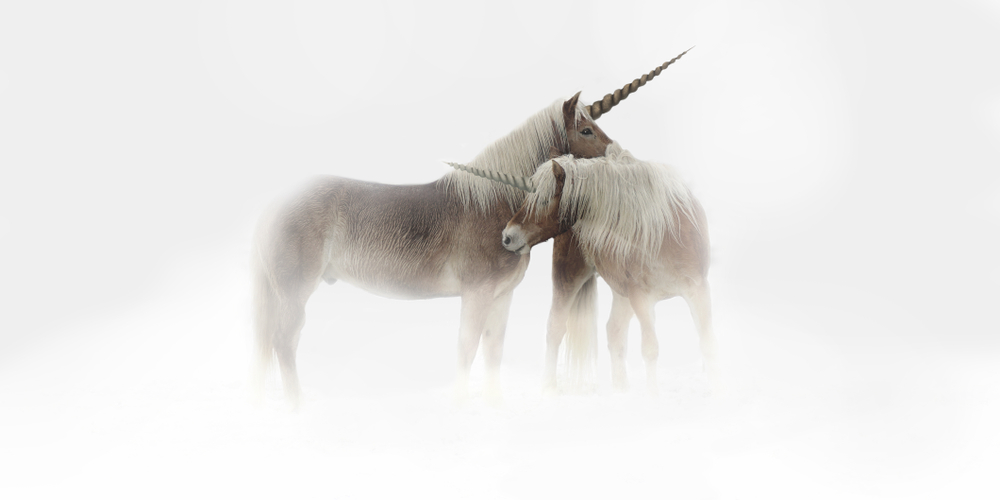 Startup Storytime: A Tale of Unicorns